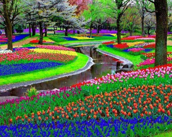 Những khu vườn đẹp nhất thế giới,vườn Keukenhof, Hà Lan