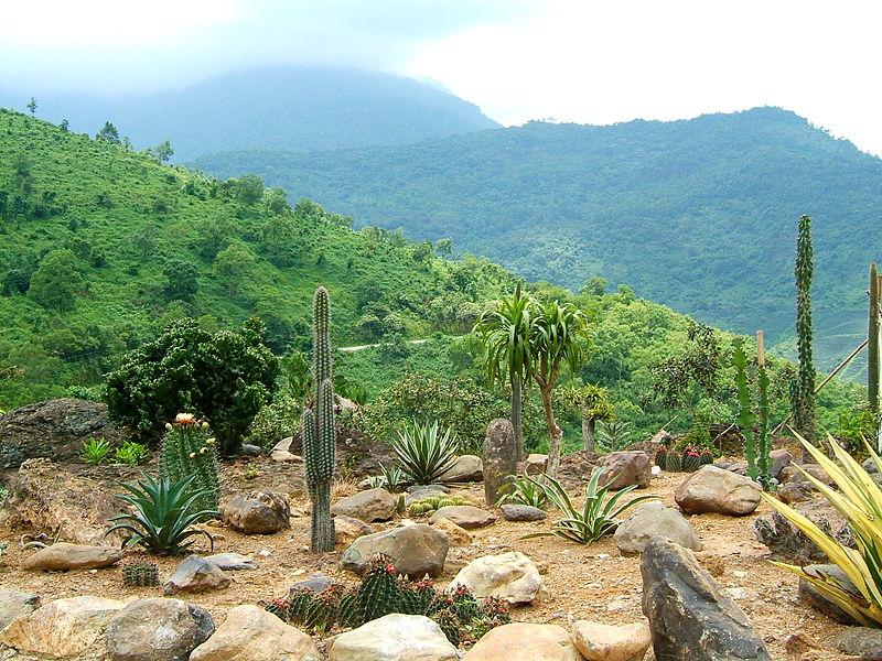 Vườn quốc gia Ba Vì,Ba Vì,vườn quốc gia Việt Nam,phong cảnh đẹp