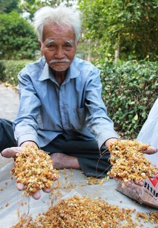 Hoa được phơi khô, cất giữ cẩn thận để phát cho dân làng
