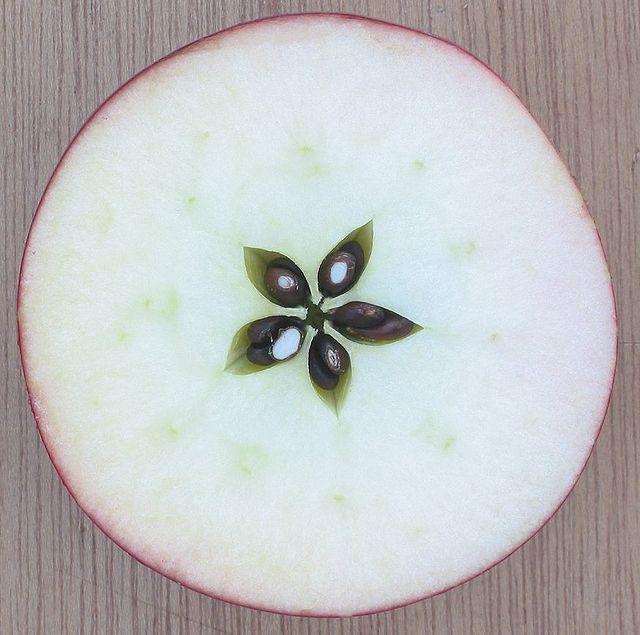 Quả táo tây bổ đôi