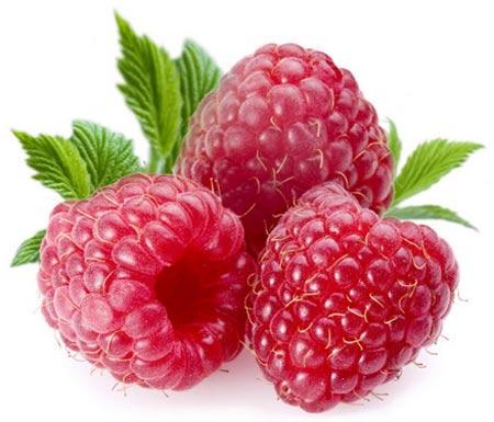 Quả mâm xôi,cây mâm xôi,mâm xôi,đùm đũm,đũm hương,đùm đùm,ngấy,mắc hú,phúc bồn tử,rubus,rubus alceaefolius poir