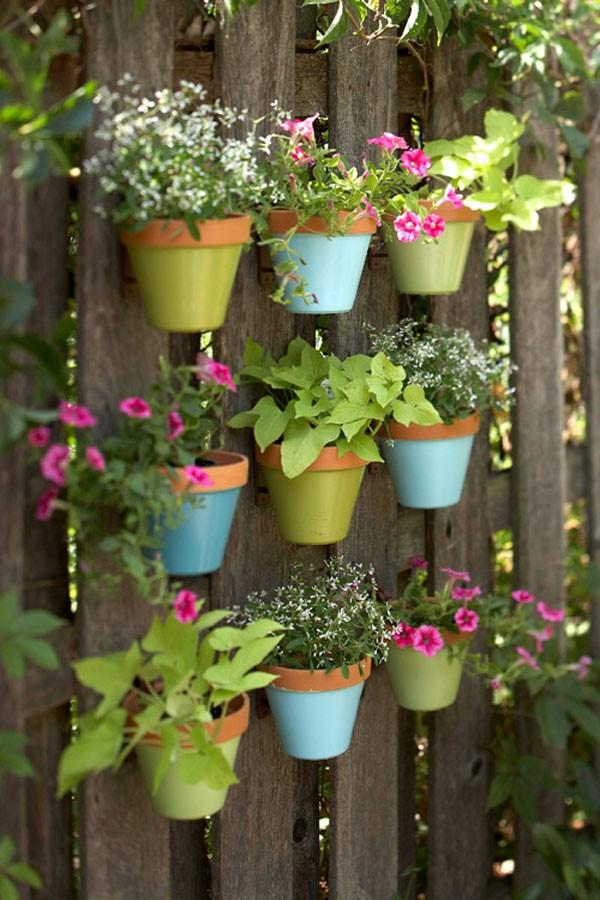 Cây treo tường - Khu vườn mini dành cho nhà có sân nhỏ.