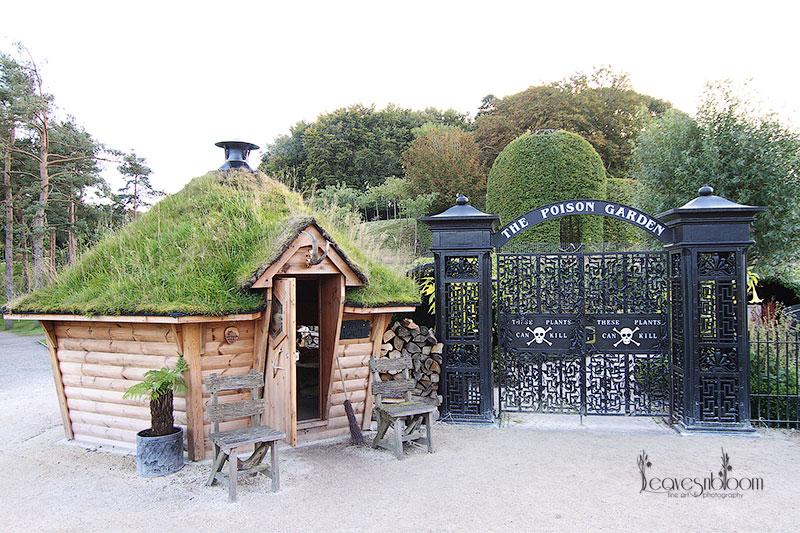 Khu vườn Alnwick Poiso