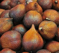 Salak,Salacca zalacca,quả da rắn,Salak (Salacca zalacca,quả da rắn)