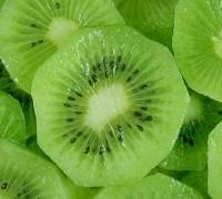 Kiwi,dương đào,cây kiwi,cây dương đào,Actinidia deliciosa,Chinese gooseberry,fuzzy kiwi,cây leo,cây ăn quả,Actinidia,kiwi leo,Kiwi vines,cây nho đực,Kiwi - Dương đào
