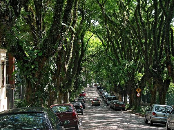 Đường Goncalo de Carvalho ở Brazil