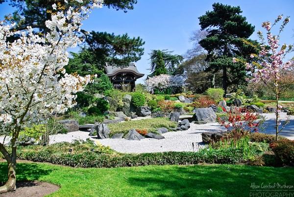 Những khu vườn đẹp nhất thế giới,vườn bách thảo hoàng gia Kew, Anh