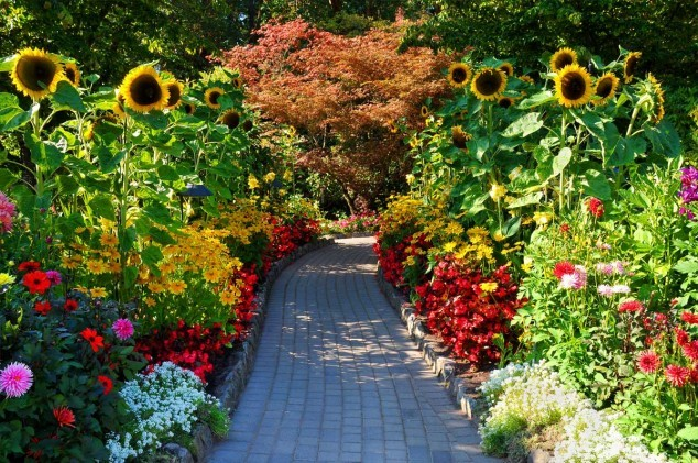khu vườn Butchart,những công viên đẹp nhất thế giớ