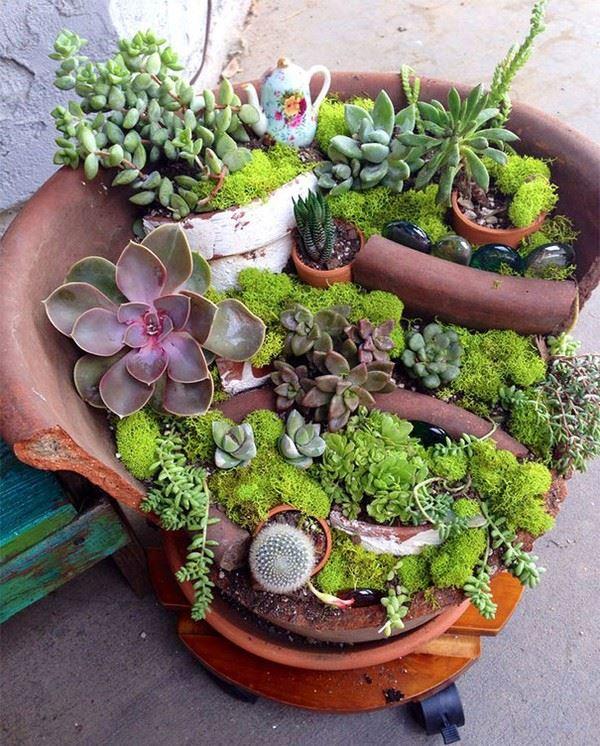 Tiểu cảnh đẹp,tiểu cảnh,vườn cây mini,vườn cây tí hon,cây cảnh đẹp