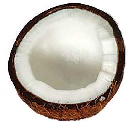 Quả dừa