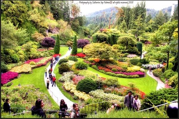 Những khu vườn đẹp nhất thế giới,vườn Butchart, Canada